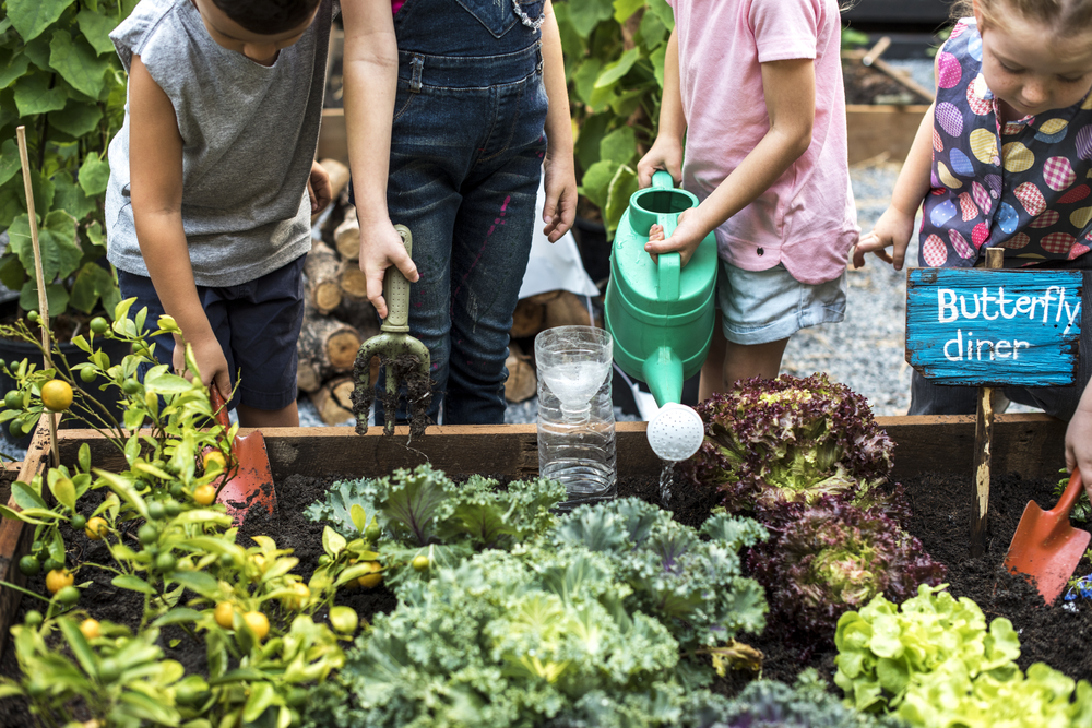 children watering plants in community spaces