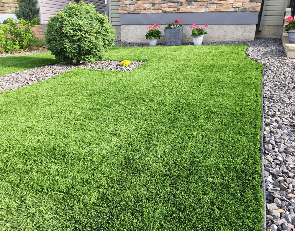 best turf installed in lawn